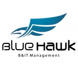 Blue Hawk Consulting-B&IT Management