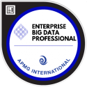 Big Data Professional digital badge