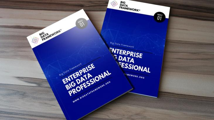 Enterprise Big Data Professional Guide Image