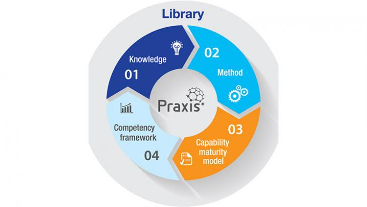 Praxis diagram outlining the elements comprising the framework